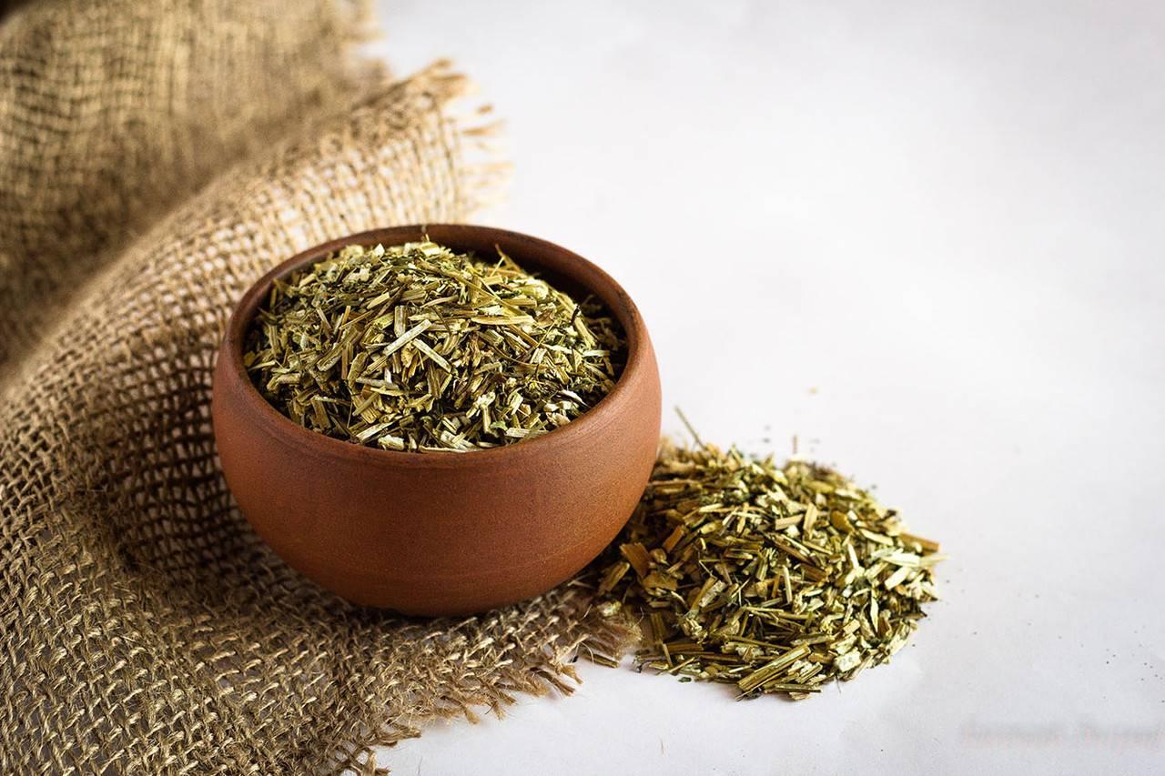 Трава череда, лечебные свойства и противопоказания