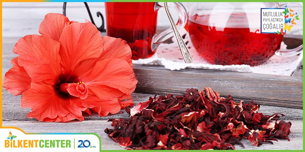 Чай каркаде повышает или понижает давление: полезные свойства, как правильно пить