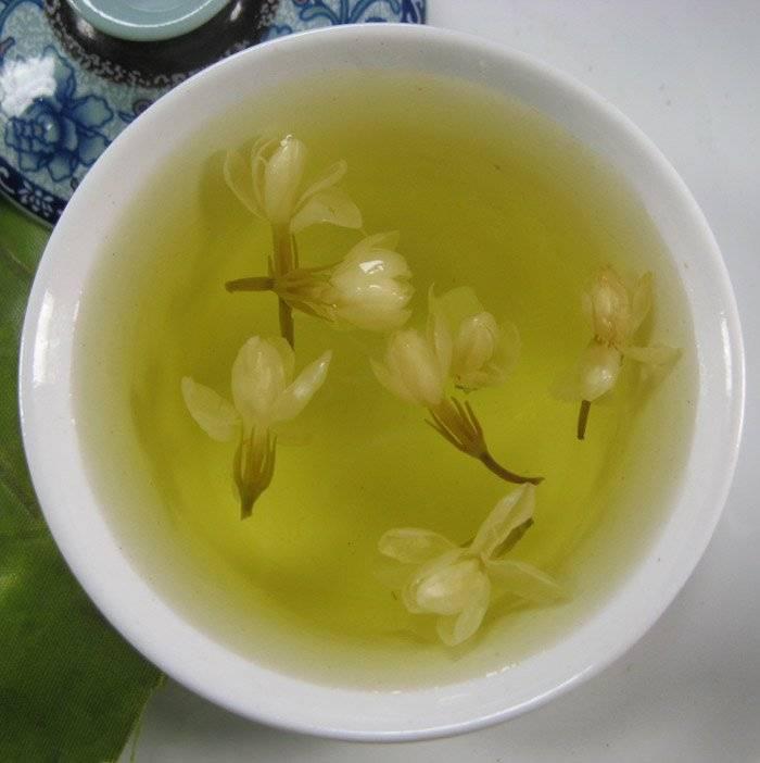 Полезные свойства зеленого чая с жасмином, его вред и противопоказания