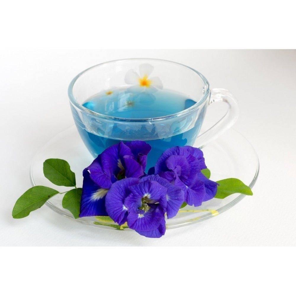 Синий чай из таиланда (анчан): полезные свойства, как заваривать
