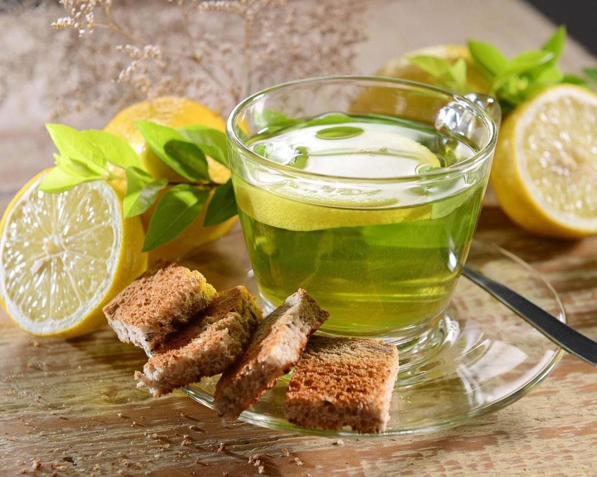 Зеленый чай с мятой: польза и вред, рецепты заваривания, свойства