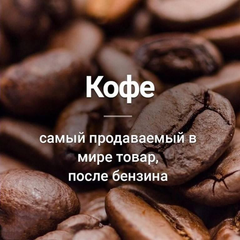 50 интересных фактов о кофе — общенет