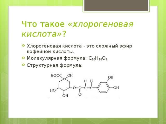 Хлорогеновая кислота: полезные свойства и вред