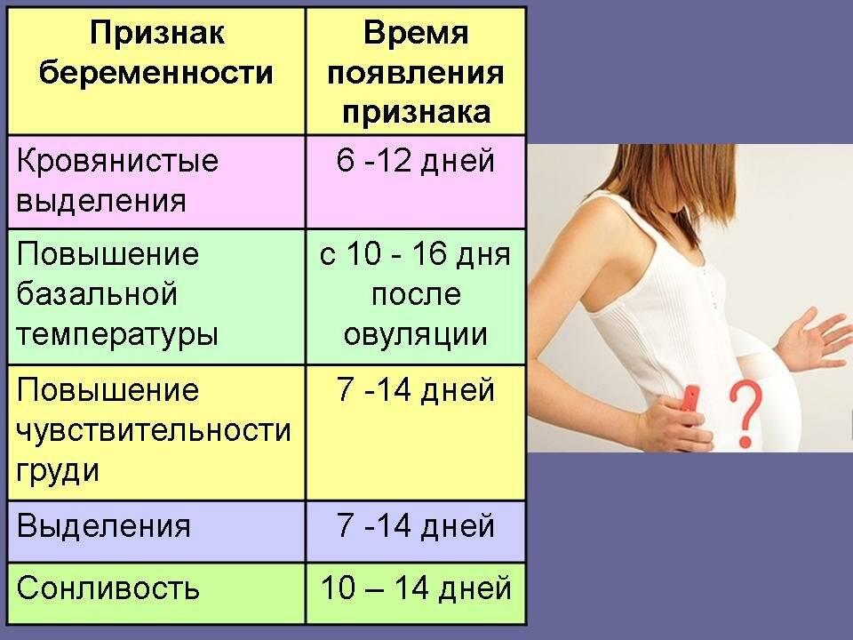 Что нельзя беременным делать, пить и есть - советы и рекомендации для женщин на ранних сроках