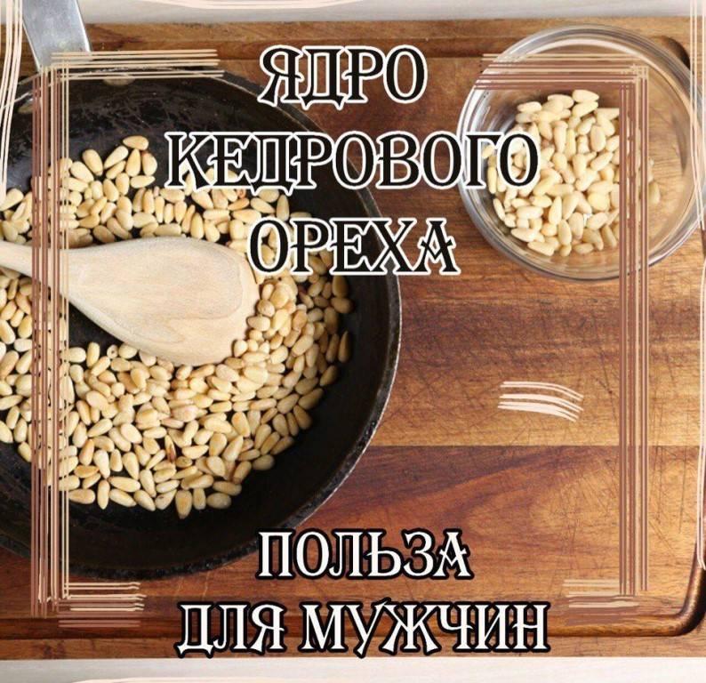 Полезные свойства кедровых орехов и противопоказания: польза и вред