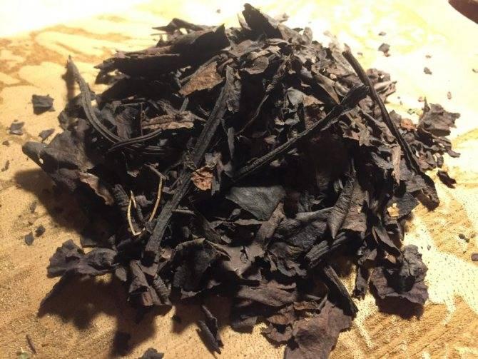Бадан чай польза и вред