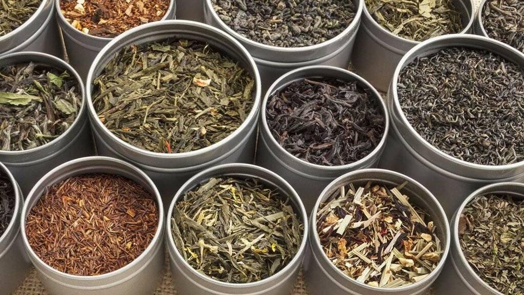 Элитный зеленый чай: продукция премиум класса, виды и сорта