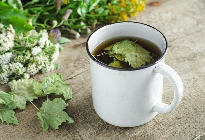 Чай из листьев смородины: польза и вред, как заварить чай из смородиновых листьев, чем полезны листья черной смородины в чае для мужчин, женщин и детей