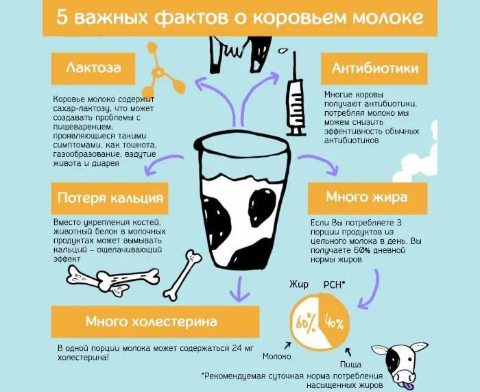 Витамины за бортом. продукты, которые вымывают кальций из организма