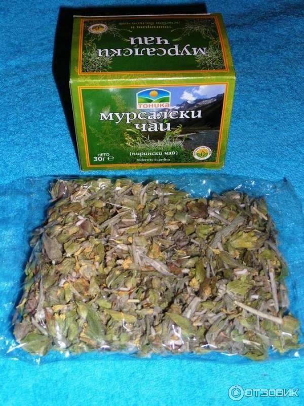 Приготовление и свойства мурсальского чая – редкого напитка из болгарии
