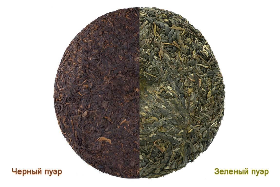 Чай пуэр: польза и вред