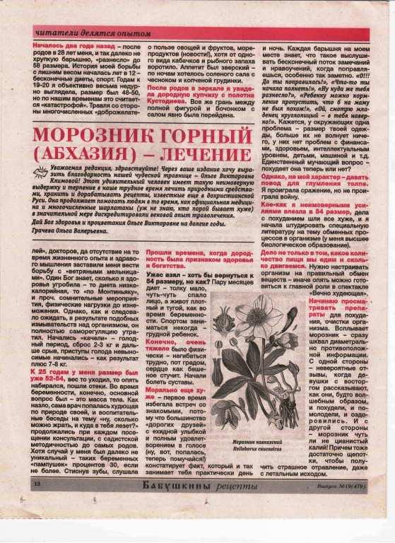 Морозник кавказский - описание и фото, лечебные свойства, лечение