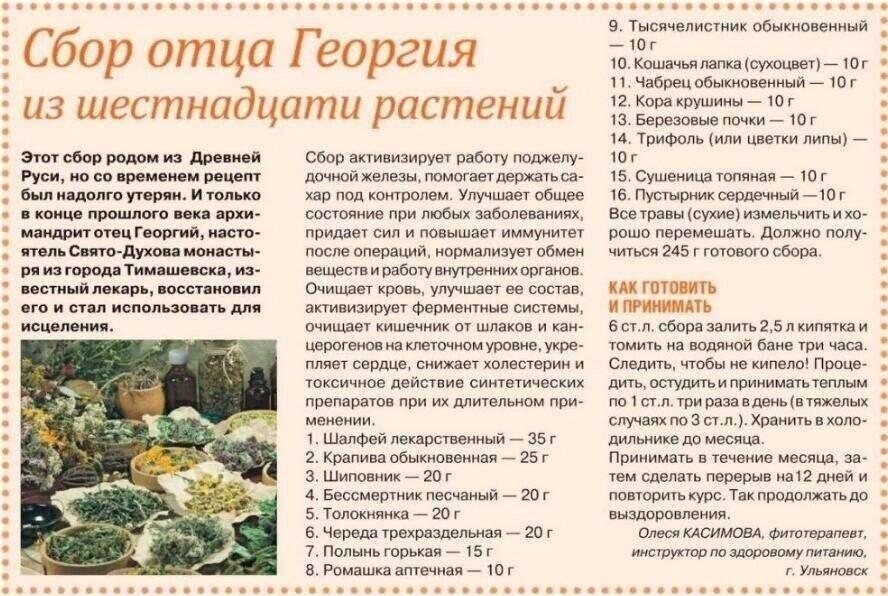 16 трав отца георгия: состав, полезное действие, рекомендации по приему