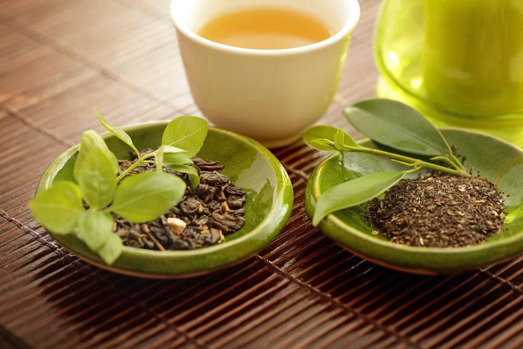 Чай с медом – польза и вред, целебные свойства напитка