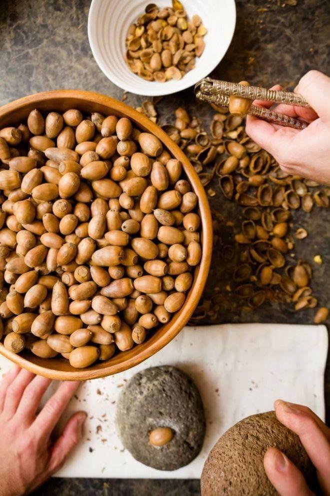 Можно ли приготовить кофе из желудей, польза и вред напитка, рецепты