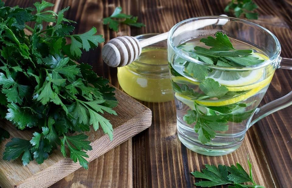 Чай из крапивы: лечебные свойства и противопоказания