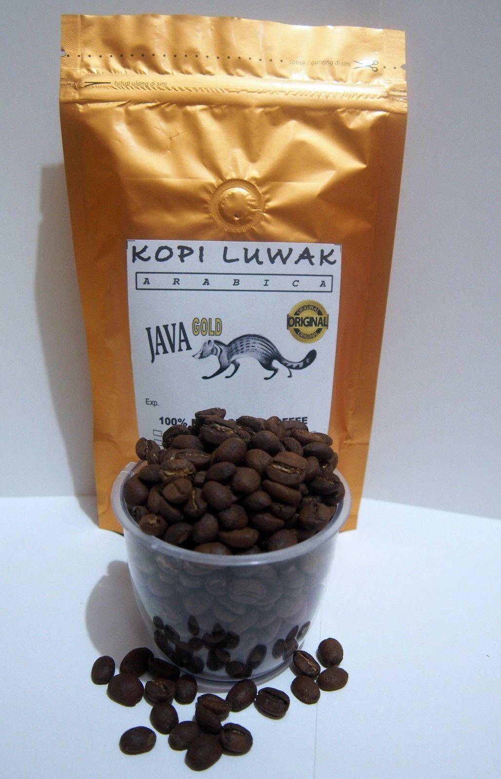 Вьетнамский кофе лювак (kopi luwak) - самый вкусный и дорогой (фото и видео)