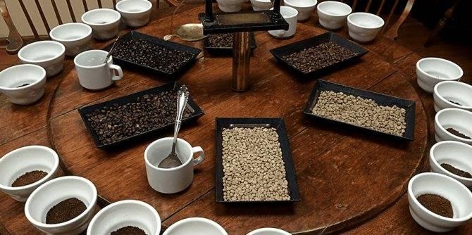 Все о дегустации чая: с чего начать, на что обратить внимание, правила проведения