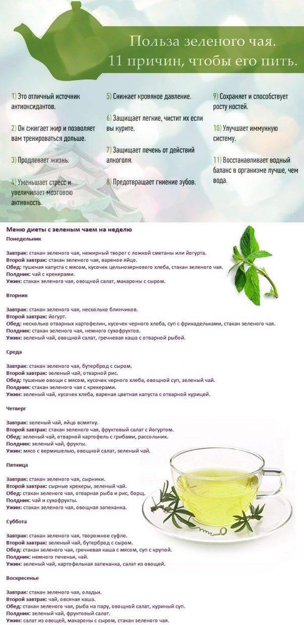 Как пить зеленый чай для похудения, помогает ли зеленый чай похудеть и как его выбрать | доктор борменталь