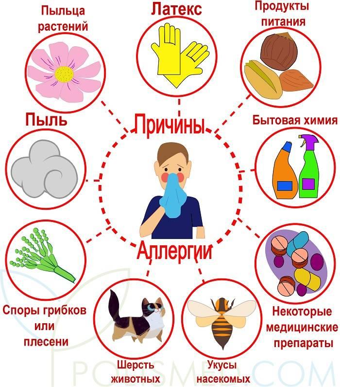 Аллергия на кофе - симптомы, диагностика, лечение, народная медицина, профилактика