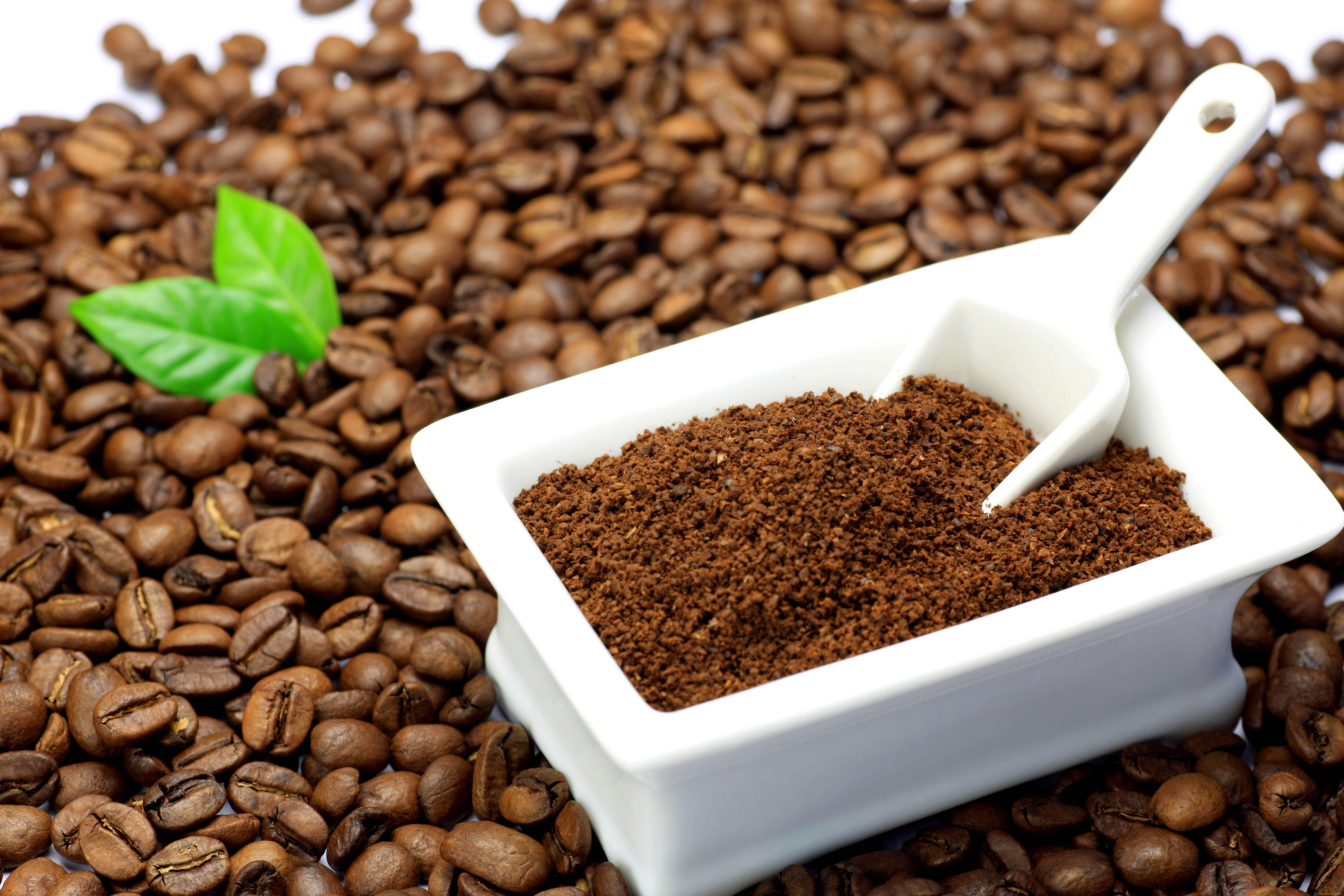 Срок годности кофе в зернах, растворимого напитка и иных видов: есть ли этот период, зависит ли от упаковки, каковы условия хранения?