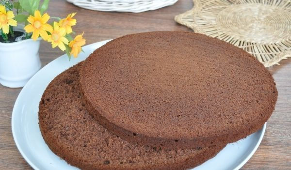 Шоколадный бисквит: рецепты, фото, видео, как испечь бисквит с шоколадом в домашних условиях