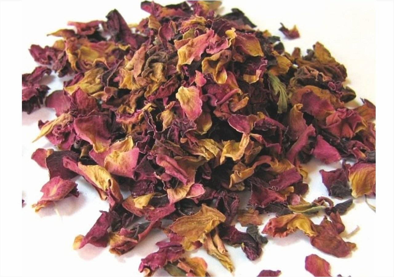 Чай из лепестков роз: для лечения и профилактики заболеваний