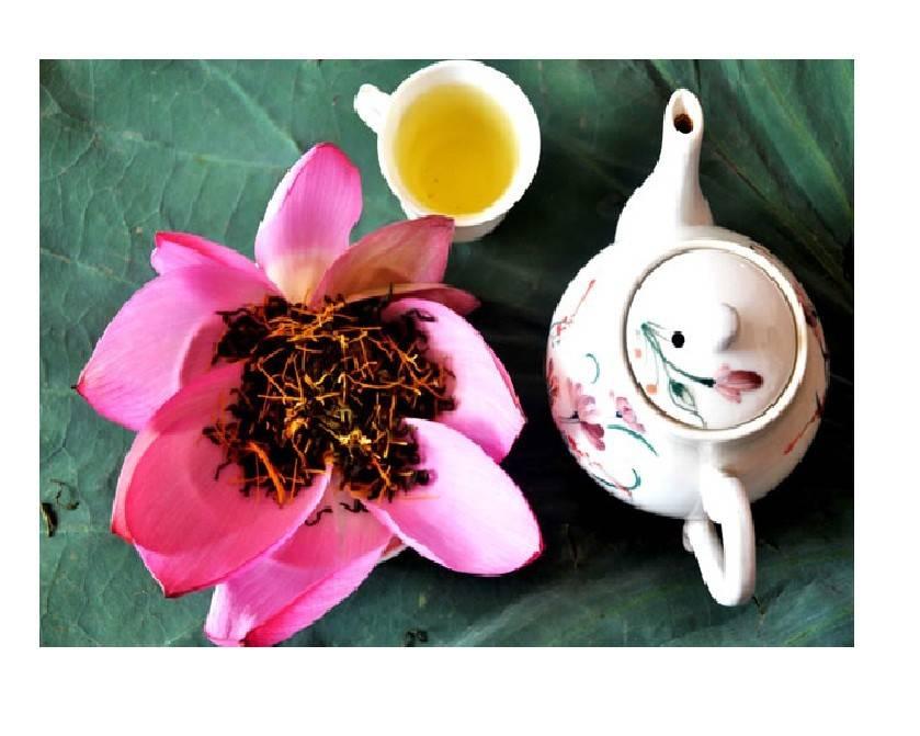 Зеленый чай лотос из вьетнама