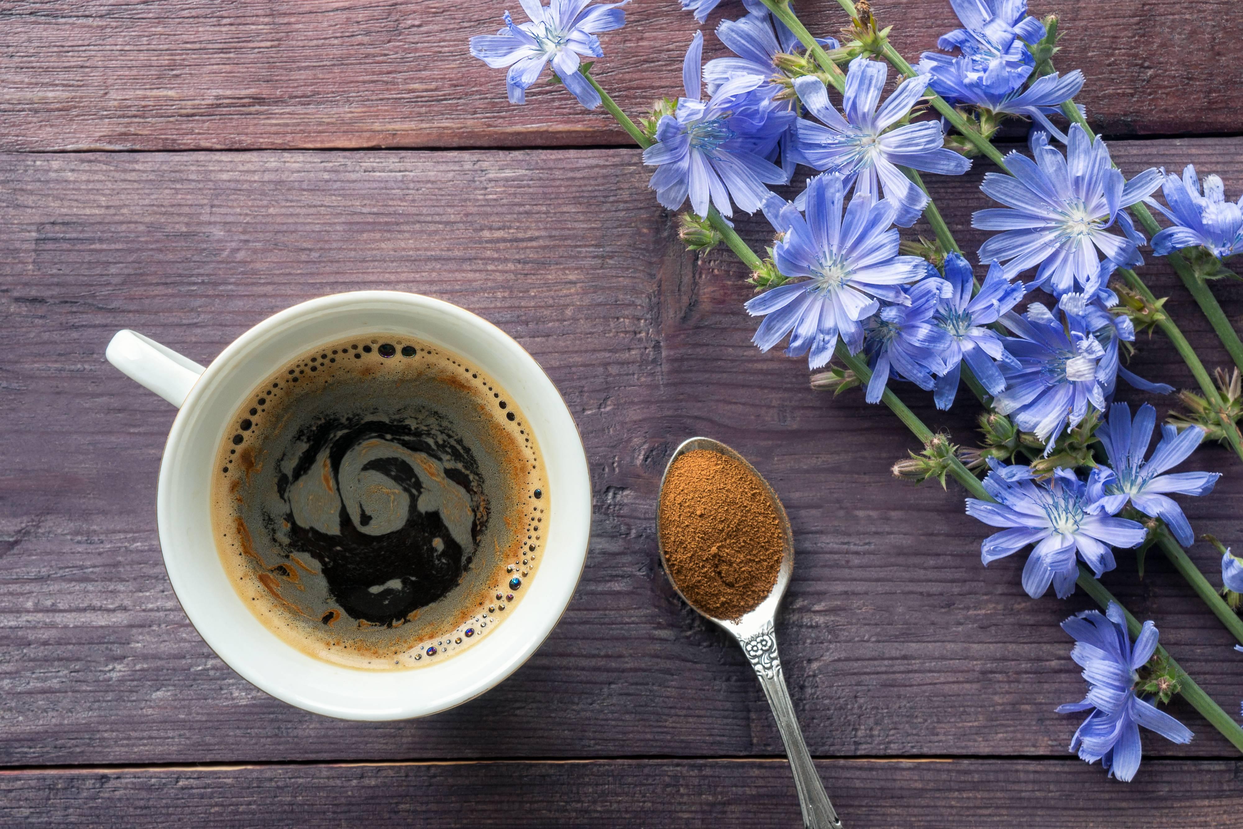 13 полезных перемен в самочувствии, которые вы испытаете, заменив кофе растворимым цикорием