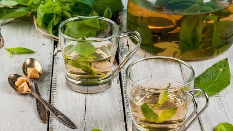 Листья груши полезные свойства и противопоказания