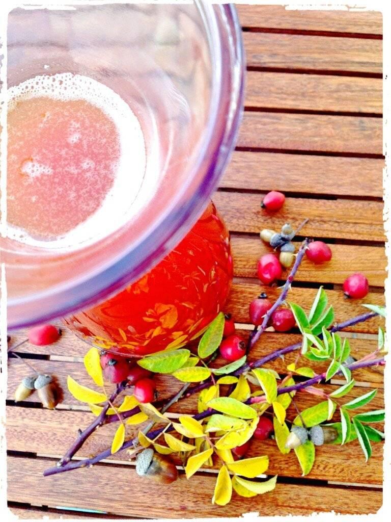 Как заварить для ребенка шиповник – рецепты отвара, сиропа, чая