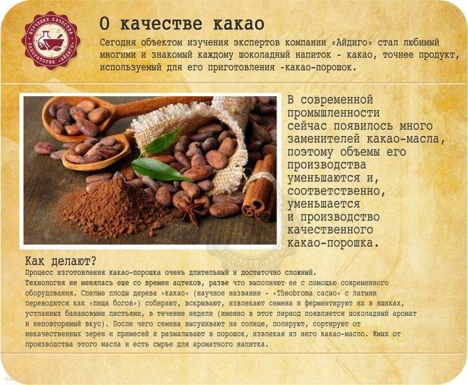 Чем полезен и вред какао. женский сайт inmoment.ru