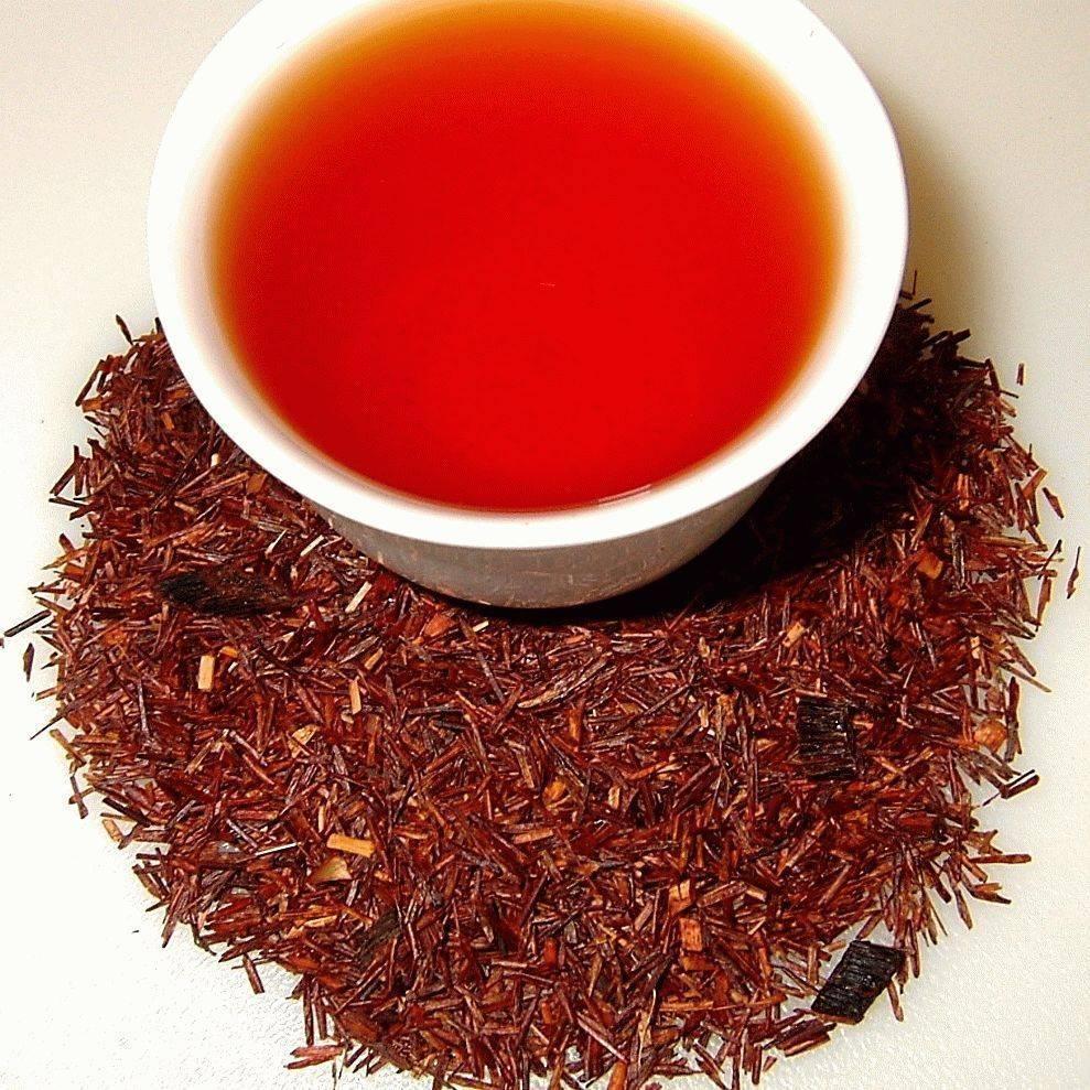 Чай ройбуш: польза и вред | польза и вред