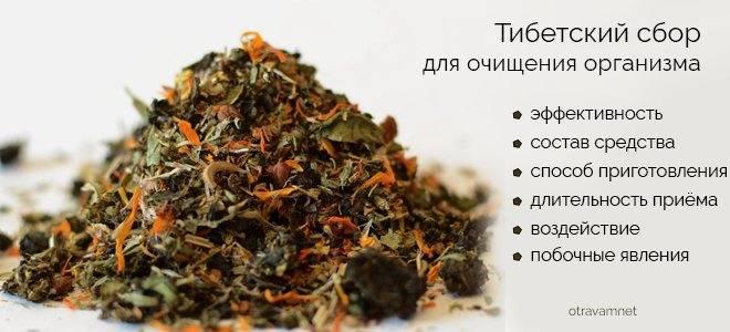 Фиточай тибетский для очищения организма отзывы | tsitologiya.su