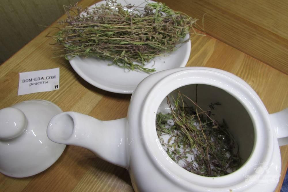 Чай с чабрецом — польза и вред, свойства и противопоказания ☕