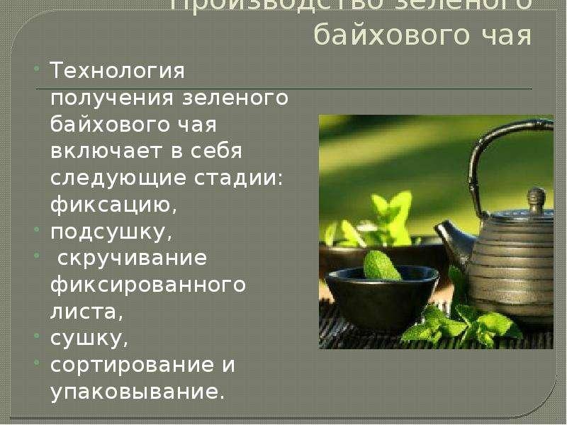 Доклад на тему чай (все о чае и его виды) 3, 4, 5 класс сообщение
