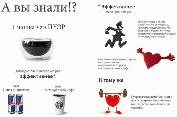 Чайное опьянение: как чай пуэр действует на человека?