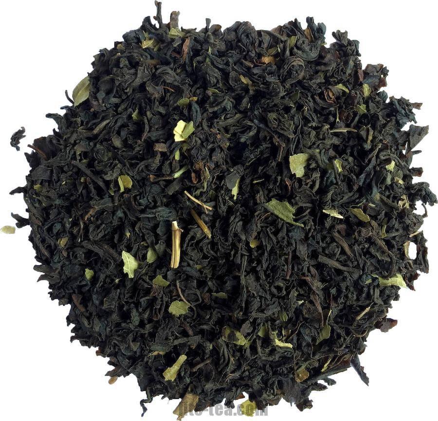 Белый цейлонский чай (серебряные типсы): заваривание, польза и вред, отзывы