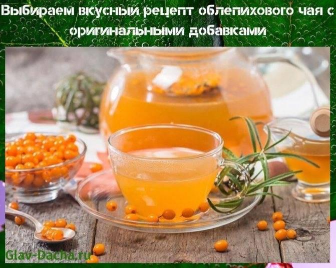 7 способов приготовить вкусный чай с облепихой дома