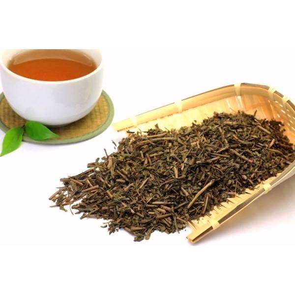 Что такое японский чай и его значение в японии