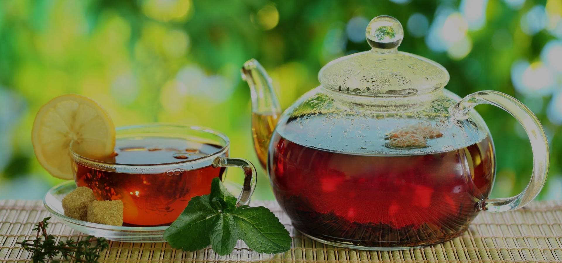 Чем вреден чай: 6 неожиданных выводов учёных - лайфхакер