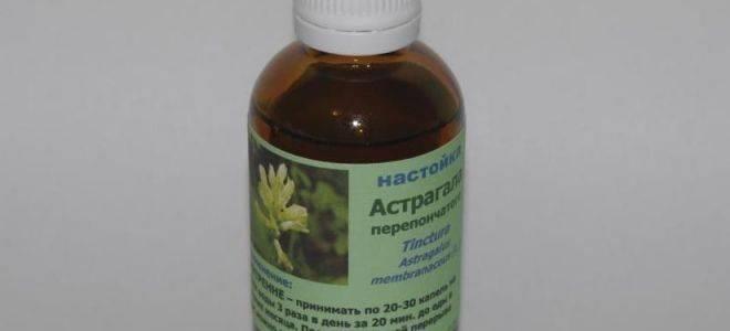 Астрагал (трава жизни) -  аптечные препараты (сироп, экстракт и др.), отзывы врачей.  рекомендации по применению травы, листьев и корней астрагала