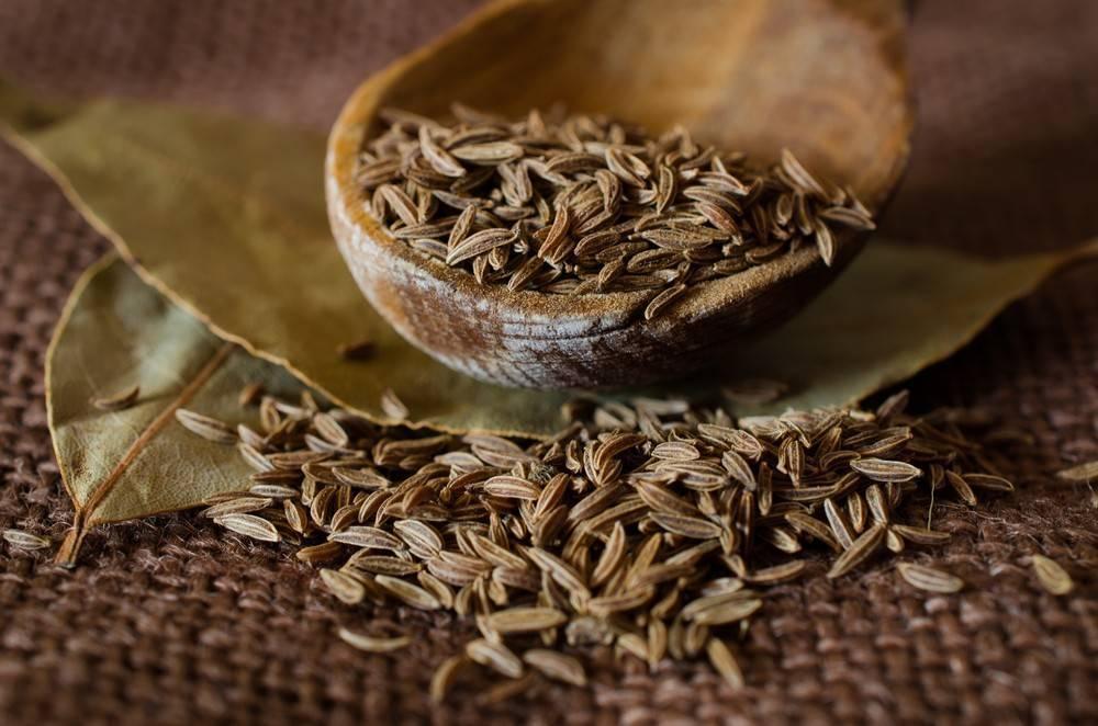 Польза и вред масла черного тмина | food and health