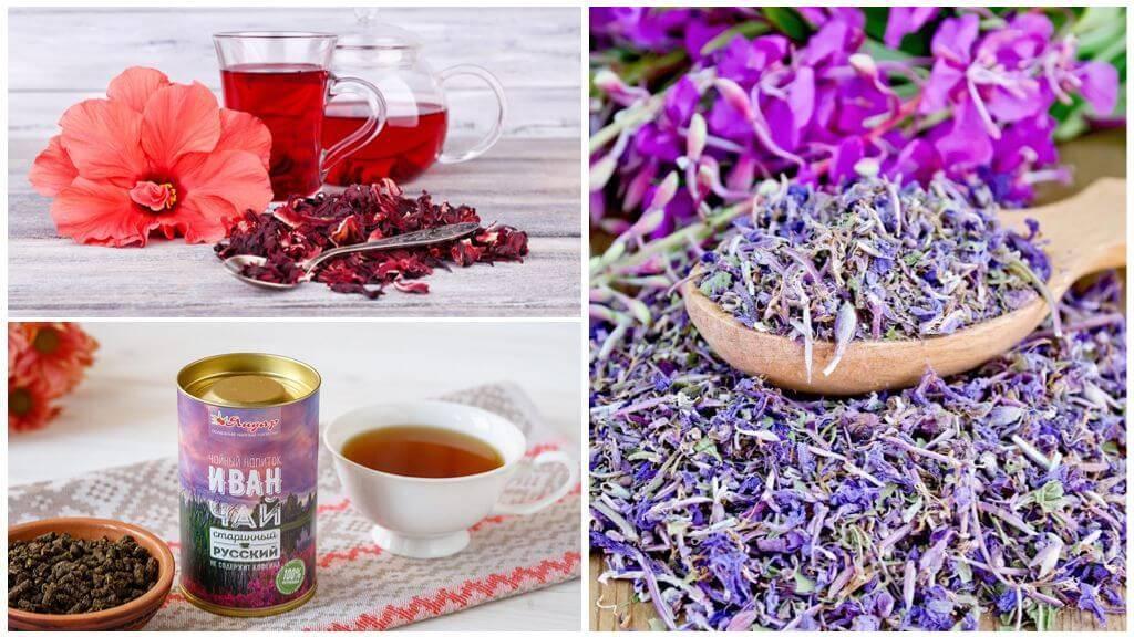 Как сушить жасмин для чая: что собирать, польза и вред цветов, заготовка