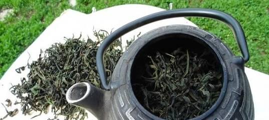 Иван-чай (кипрей) – сбор и заготовка: как собирать, заготавливать и сушить – фото и видео