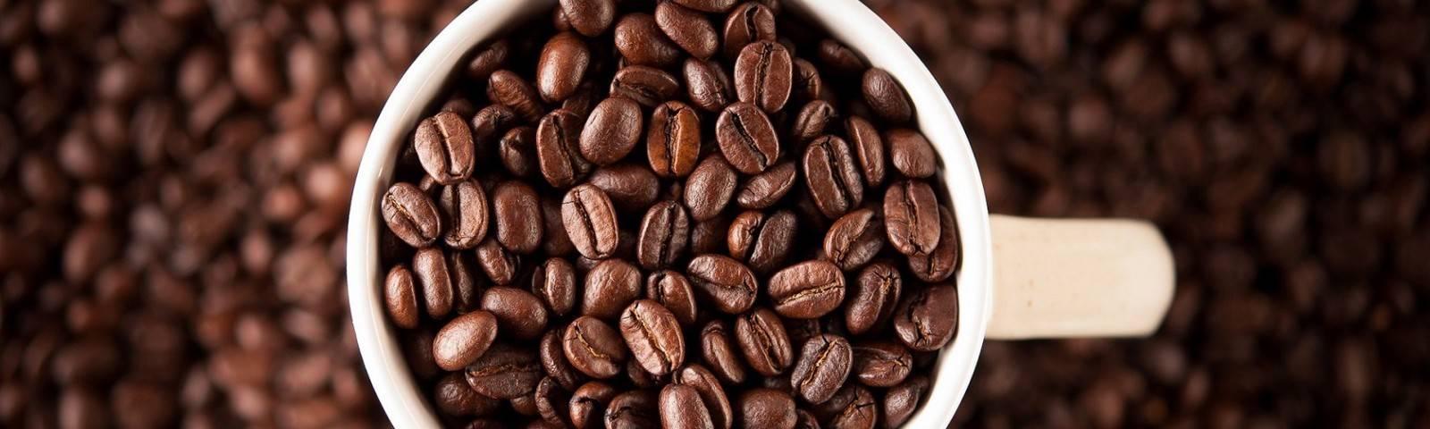 Кофе либерика: особенности сорта кофейных зерен и как пить