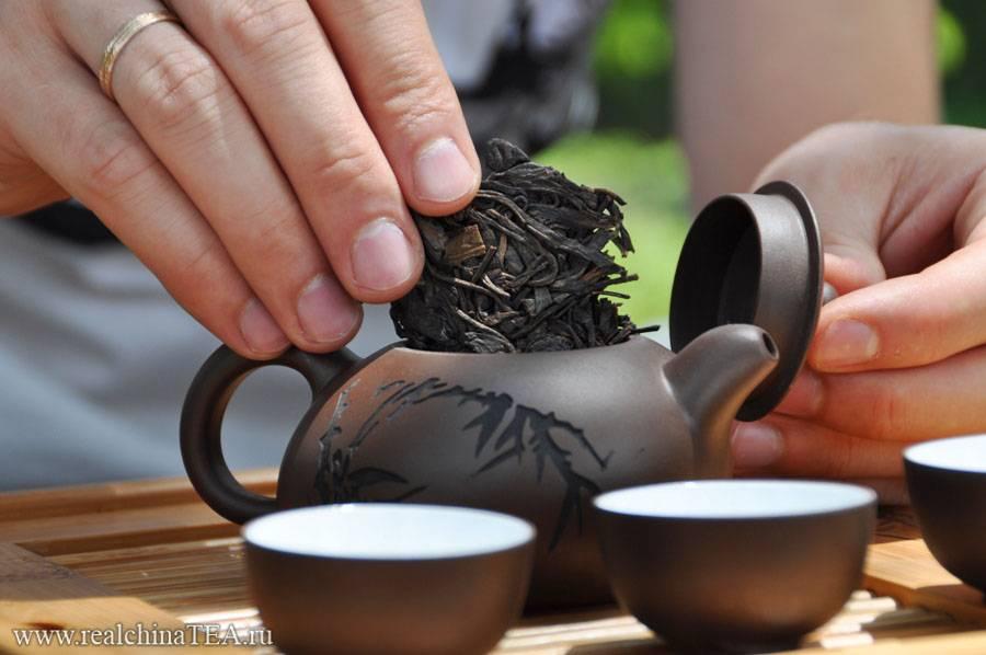 Как правильно заваривать чай пуэр и добиться бодрящего  эффекта