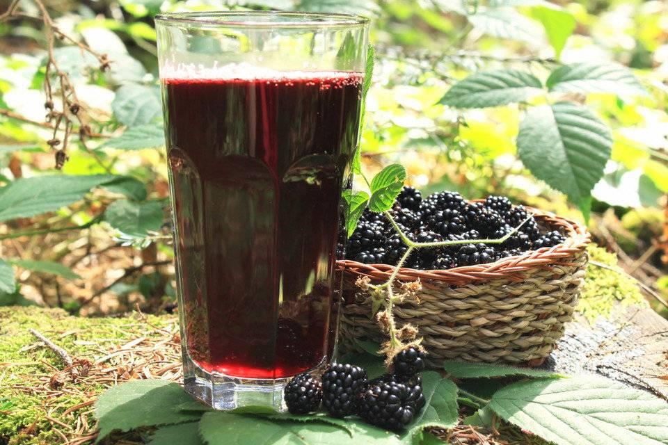 Польза и вред ежевики для здоровья: лечебные свойства ягоды для организма человека при употреблении в виде сока, чая из листьев или замороженную
