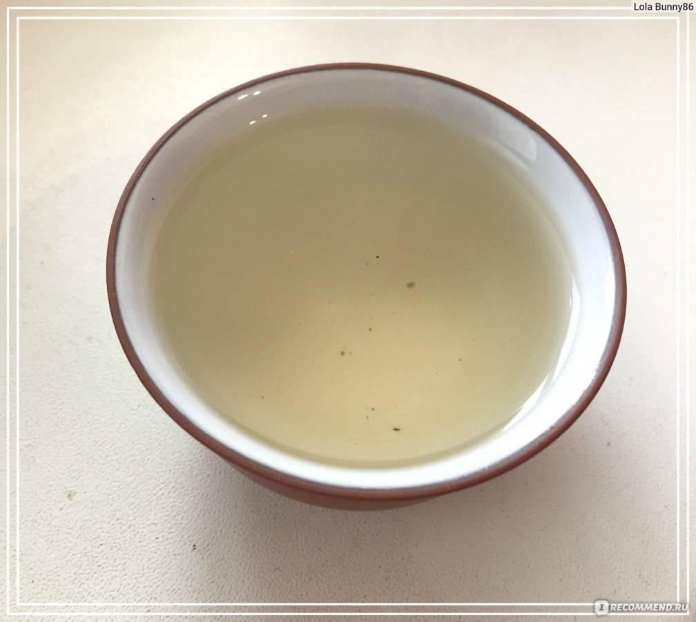 Польза и вред чая кудин, или «горькая слеза», советы врачей по завариванию и использованию напитка