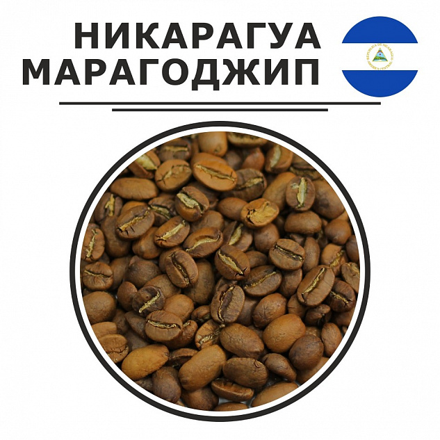 Гватемальский кофе: особенности, виды, сорта, известные марки